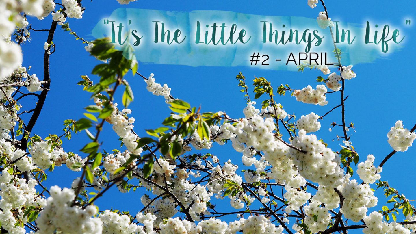 """It's The Little Things In Life"" – #2 – April 