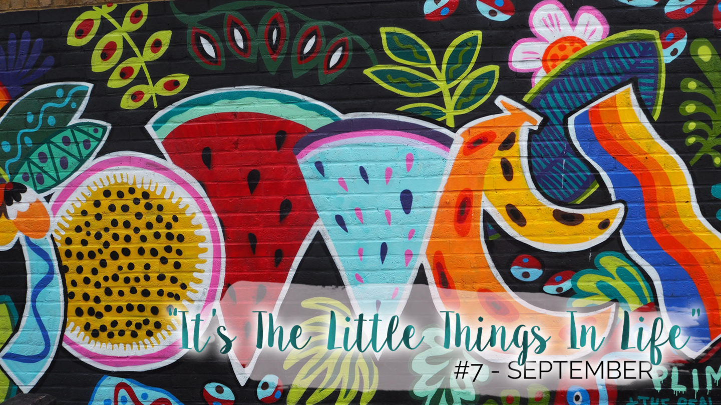 """It's The Little Things In Life"" – 7 – September 