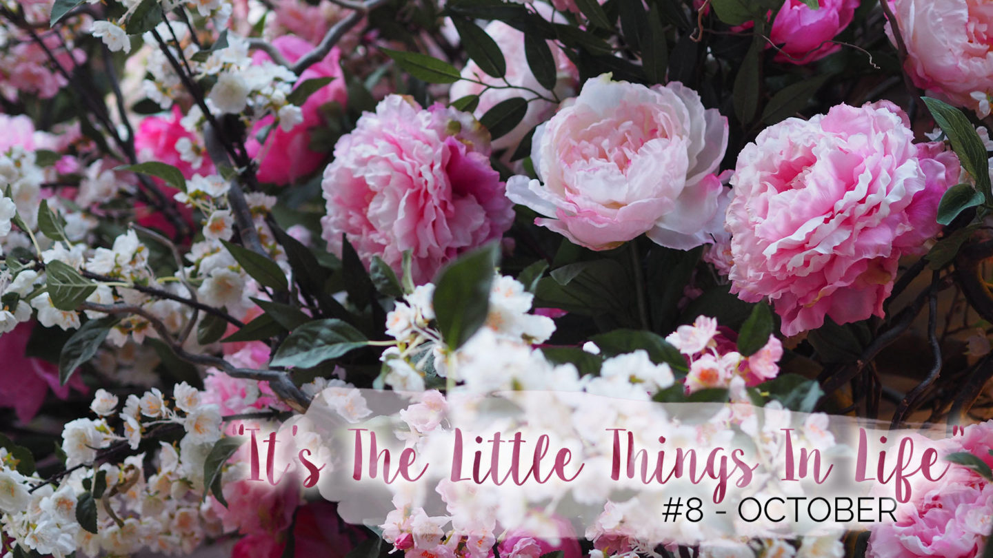 """It's The Little Things In Life"" – 8 – October 