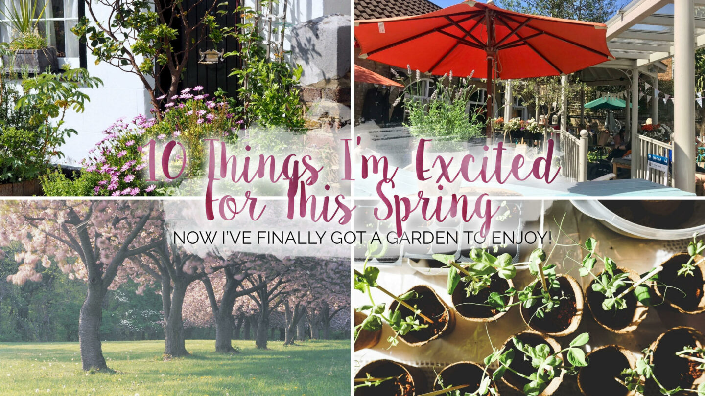 10 Things I'm Excited For This Spring || Life Lately