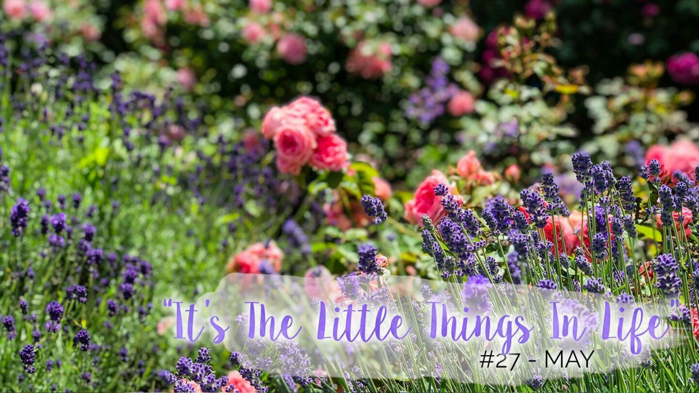 """It's The Little Things In Life"" – 27 – May 