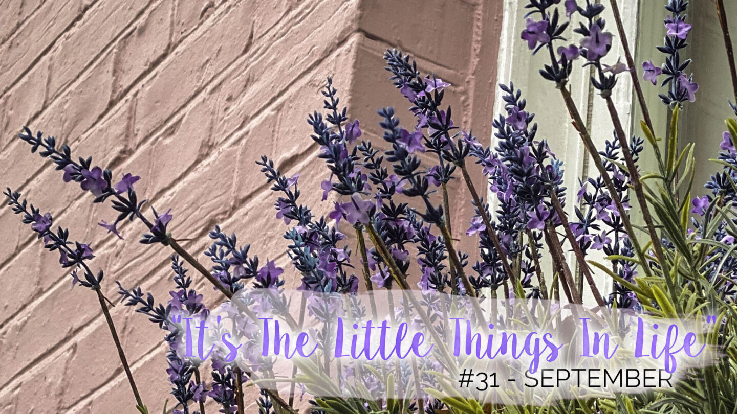 """It's The Little Things In Life"" – 31 – September 